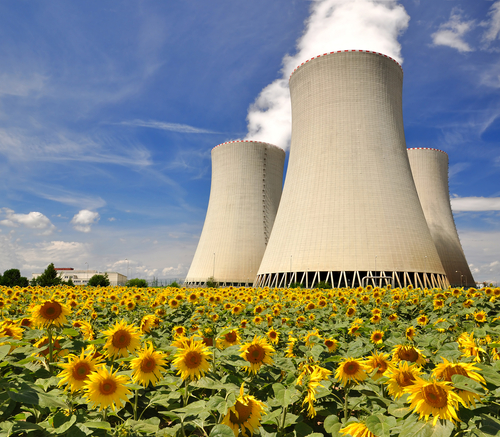 the nuclear power More than two dozen countries have nuclear power, but only a few have nuclear weapons or are suspected of pursuing nuclear weapons.