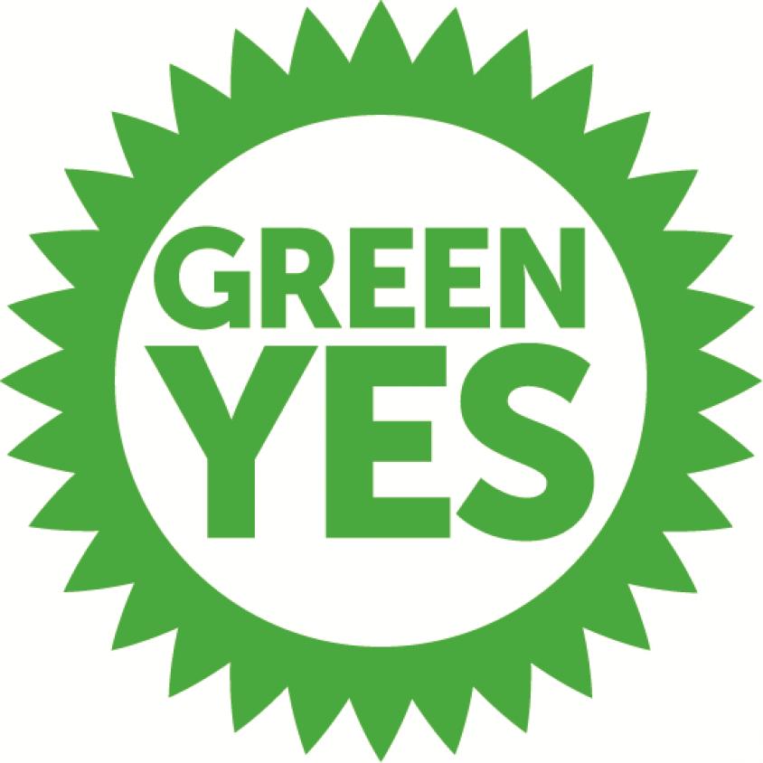Scottish Greens Push For A Radical New Future In Scotland European